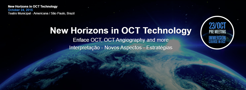 New Horizons in OCT Technology